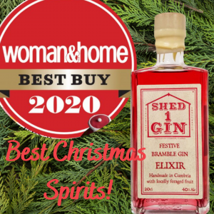 Woman & Home Best Christmas Spirits for Festive Bramble Gin Elixir!
