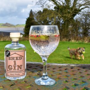 Lime, Ginger and Strawberry Gin – Fancy Frolic from Shed 1 Gin